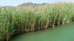 Boat tour river reeds, historical dalyan, ortaca, koycegiz, turkey Stock Footage