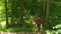 Stock Video Footage of man crossing bizarre bridge tree in batumi botanical garden