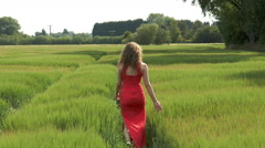 Pretty young woman walking in field of wheat (away from camera clip 2). Stock Footage
