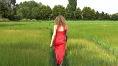 Pretty young woman walking in field of wheat (away from camera clip 1). Stock Footage