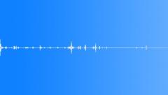 crunch mortar chew (5) - sound effect