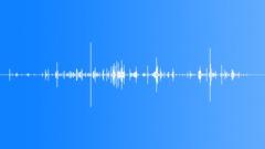 crunch mortar chew (3) - sound effect