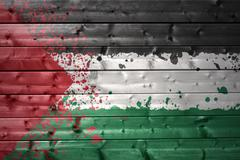 painted palestinian flag on a wooden texture - stock photo