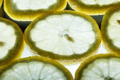 back lit lemon - stock photo