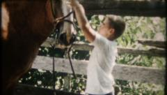 2227 - young boy puts a bridal on horse & rides - vintage film home movie Stock Footage