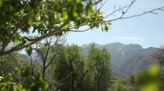 River and mountains tilt Stock Footage