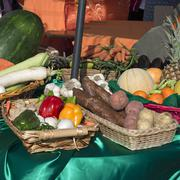 Stock Photo of basket with vegetables and fruits of various kinds