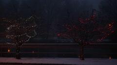 Christmas Lights on Park Trees Stock Footage