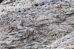 Sharp gray rocks on the beach - stock photo