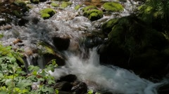 Idyllic forest scenery with creek and cascades #4 Stock Footage
