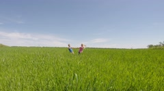 Children run across the meadow and rejoice - stock footage