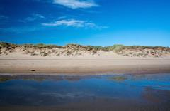 Sand dunes landscape - stock photo