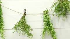 Single twigs of Thyme and Rosemary Stock Footage