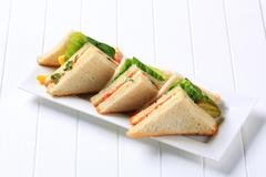 Vegetable double decker sandwiches on long plate - stock photo