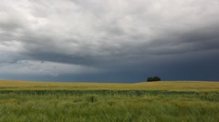 Summer landscape before heavy storm Stock Footage