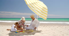 Family Having Great Time on The Beach Stock Footage