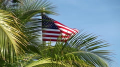 Waving USA Flag through the palm tree. Stock Footage