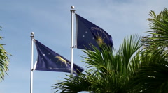 Waving flags of Conch Republic (Micronation) in Key West. Florida Stock Footage
