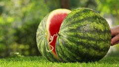 Cutting watermelon, Closeuo shot. Editing. Ready for use. - stock footage