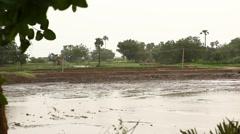 Bomb Blast at Rural Fields - stock footage