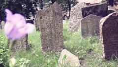 Old monumental cemetery in Prague, Czech republic Stock Footage