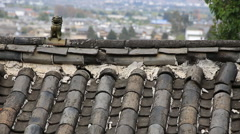 Traditional roof with small lion sculpture in Lijiang old town Stock Footage