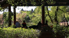 Tourists resting under the trees at black dragon pool Stock Footage
