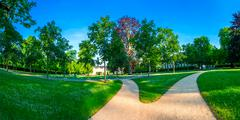 Sandy path in a summer park Stock Photos