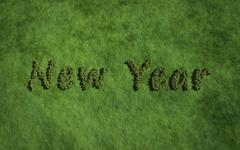 New year text tree with grass background - stock illustration