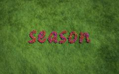 season text flower with grass background - stock illustration