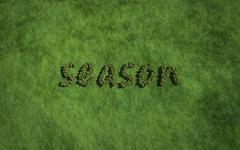 season text tree with grass background - stock illustration