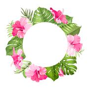 Stock Illustration of Tropical flower frame