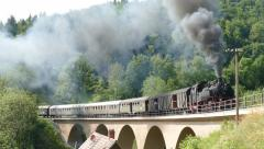 Steam train runs over a viaduct Stock Footage