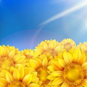Sunflowers with bright blue sky. EPS 10 - stock illustration