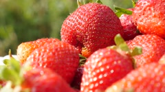 Tasty red strawberry fruit background slow tilting 4K 2160p UltraHD footage - Stock Footage