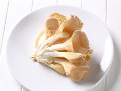 Cluster of fresh oyster mushrooms - stock photo