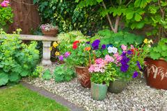 Garden with containers full of colorful flowers - stock photo