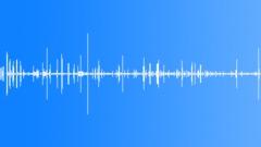SFX - Little birds Sound Effect