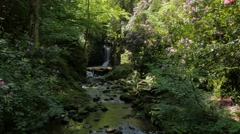 Stock Video Footage of Idyllic forest scenery with creek and cascades #9