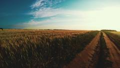 To Go On Through A Wheat Field 4 Stock Footage