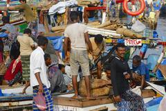Fishermen unload  catch of the day, Al Hudaydah, Yemen. - stock photo