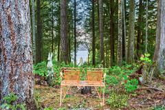 Authentic bench overlooking lake. Stock Photos