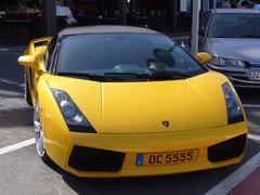 Yellow Lamborghini coupe parked in Puerto Banus Kuvituskuvat