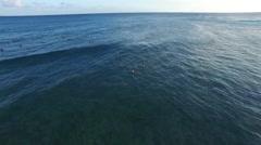 Hawaiian Wave Rider Stock Footage