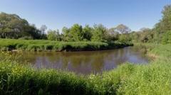 Czarna Nida river near Tokarnia, Poland Stock Footage