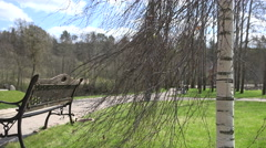 bench, birch tree and lightings near park path in spring. 4K - stock footage