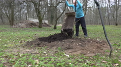 Farmer unload wheelbarrow with compost on vegetable bed. 4K Stock Footage