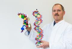 Biologist shows DNA and mRNA model - stock photo