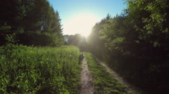 Woman walking on a rural road Stock Footage