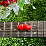 heart on neck guitars and strings on the grass - stock photo